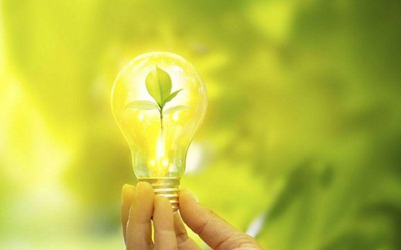 Design Sem Nome (25) - MALAGGI - O que é um negócio sustentável?